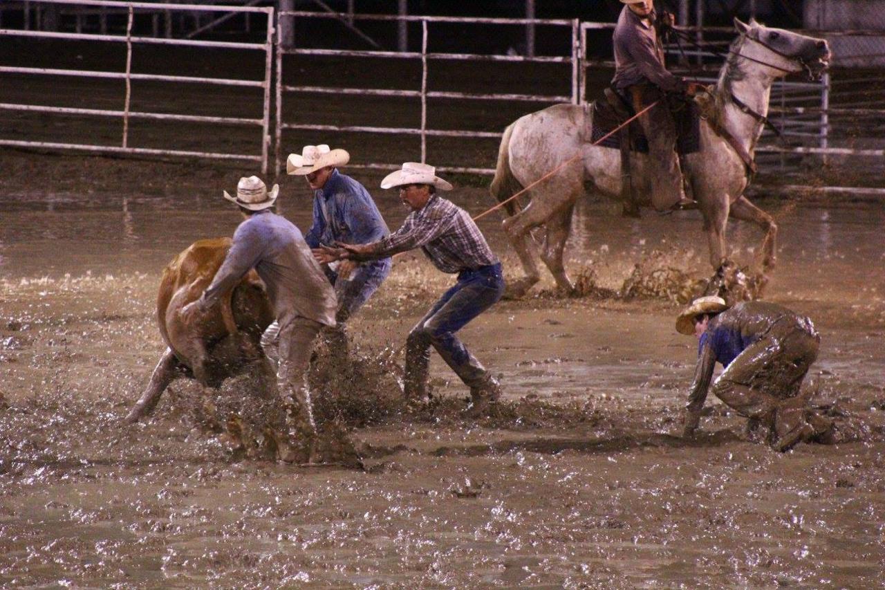 Muddy rodeo