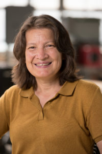 Tami Bond, Scott Presidential Chair in Energy, Environment and Health and Professor, Department of Mechanical Engineering