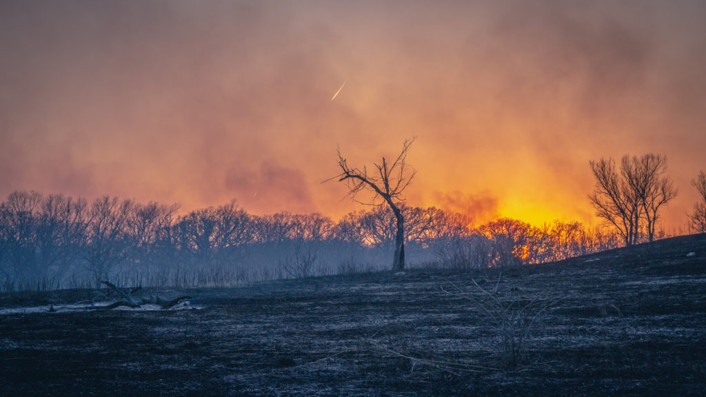 The sun sets over a prescribed burn at the Konza Prairie Biological Station in the Flint Hills of Kansas. Credit: Gregory Schill