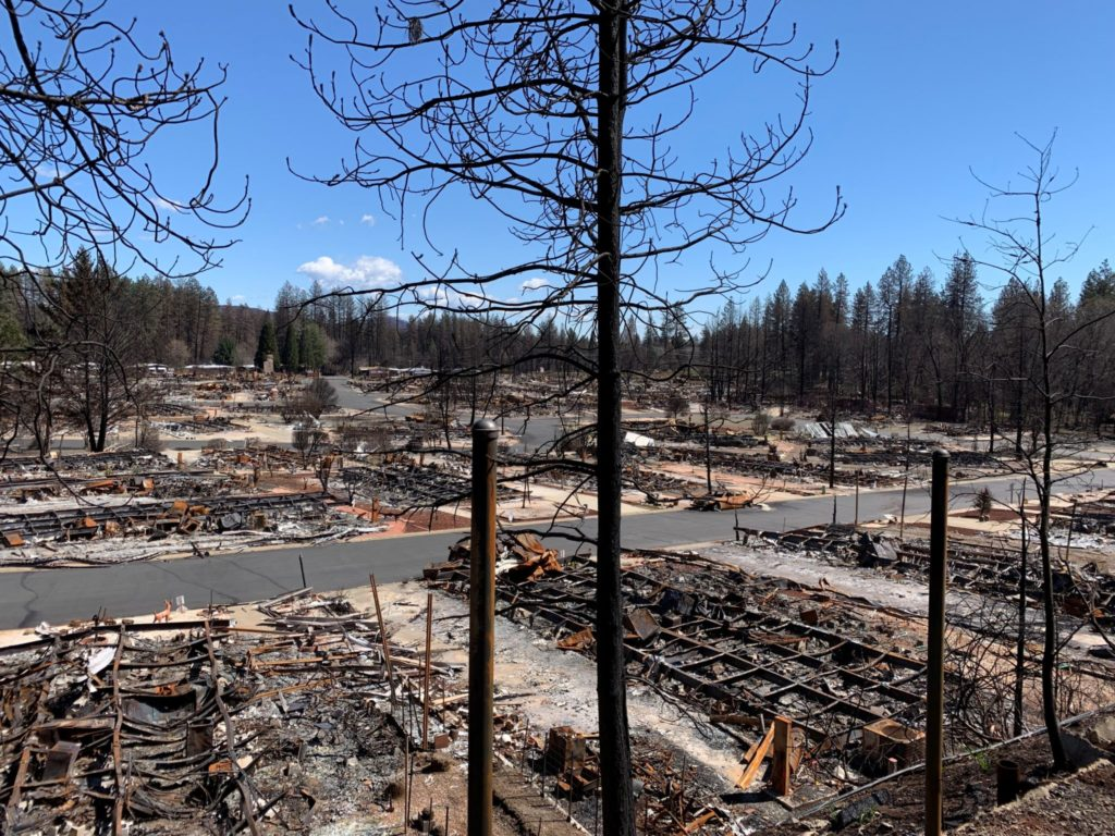 Charred trees on a barren landscape show what remains of a mobile home park is pictured following the 2018 Camp Fire. Credit: Hussam Mahmoud