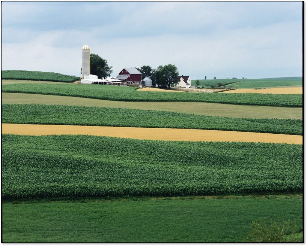 A photo of a farm with crops in the foreground.