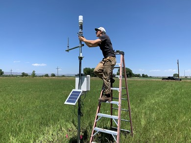 A student stands on a ladder in a farm field as part of a project to make inexpensive soil moisture sensors for agriculture.