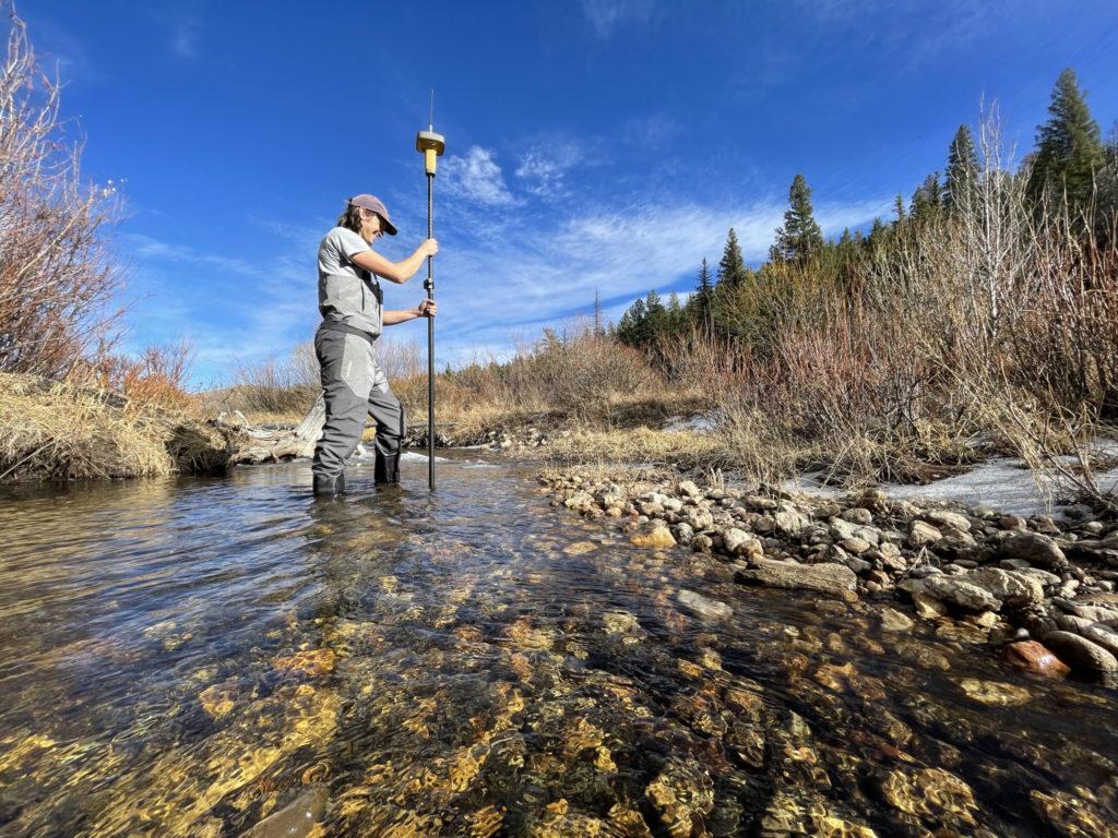 A researcher surveys a streambed